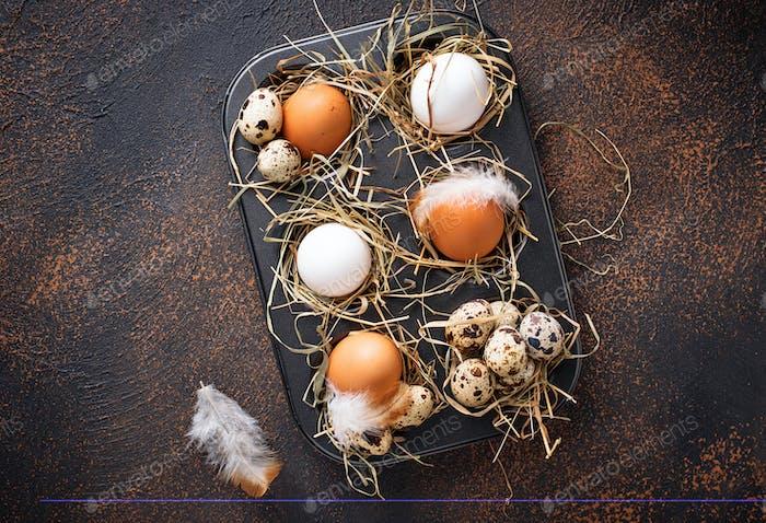 Frisches rohes Huhn und Wachteleier im Sieb