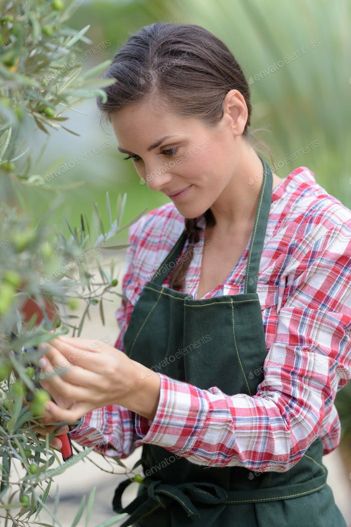 cute girl working in a tree nursery