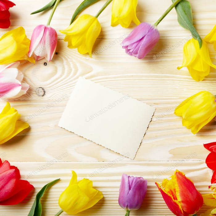 Frame of colorful tulips with blank greeting card on natural woo