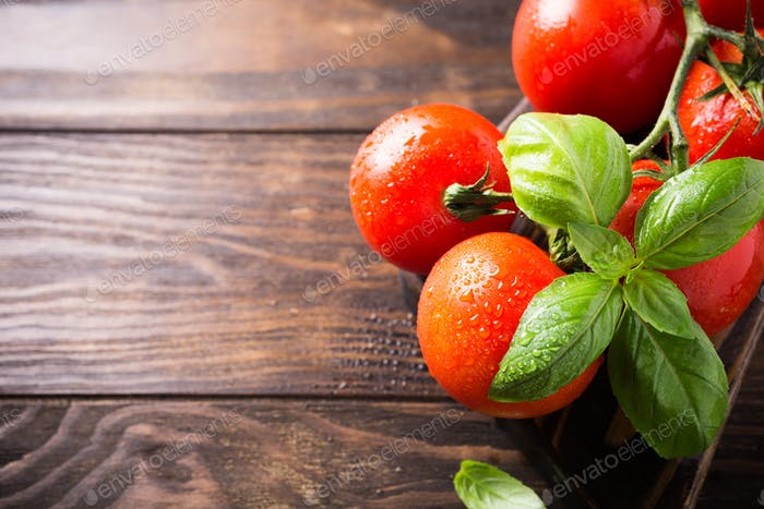 Branch of ripe natural tomatoes and basil leaves