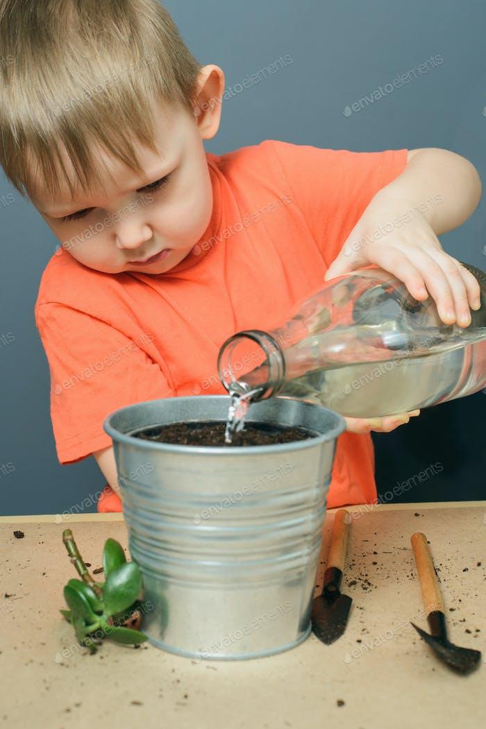 kaukasische blond Kind Junge Bewässerung Boden für das Pflanzen Geld Baum Pflanze in Metall Blumentopf