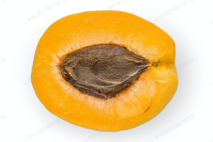 Half of apricot on the white background