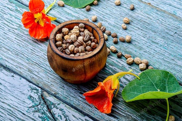 Semillas y flores de capuchina
