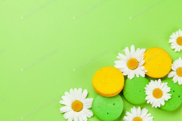 Camomile flowers and macaroon cookies