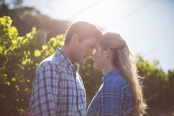 Young couple standing face to face at farm