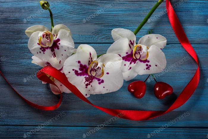 Branch white Orchid and hearts