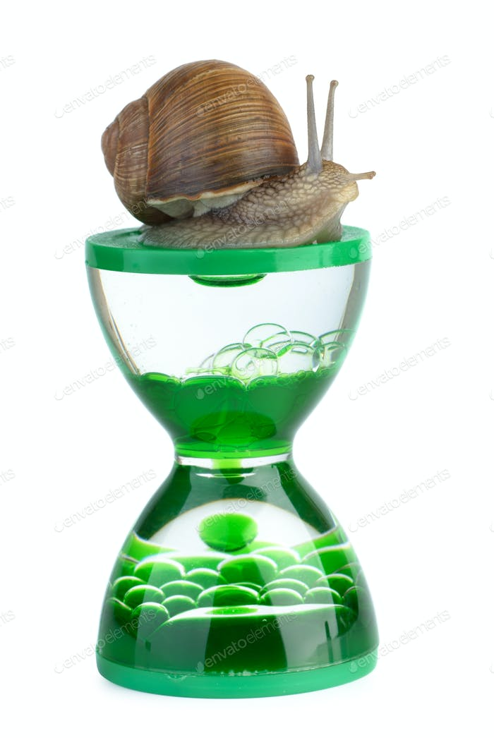 Snail and gel hourglass