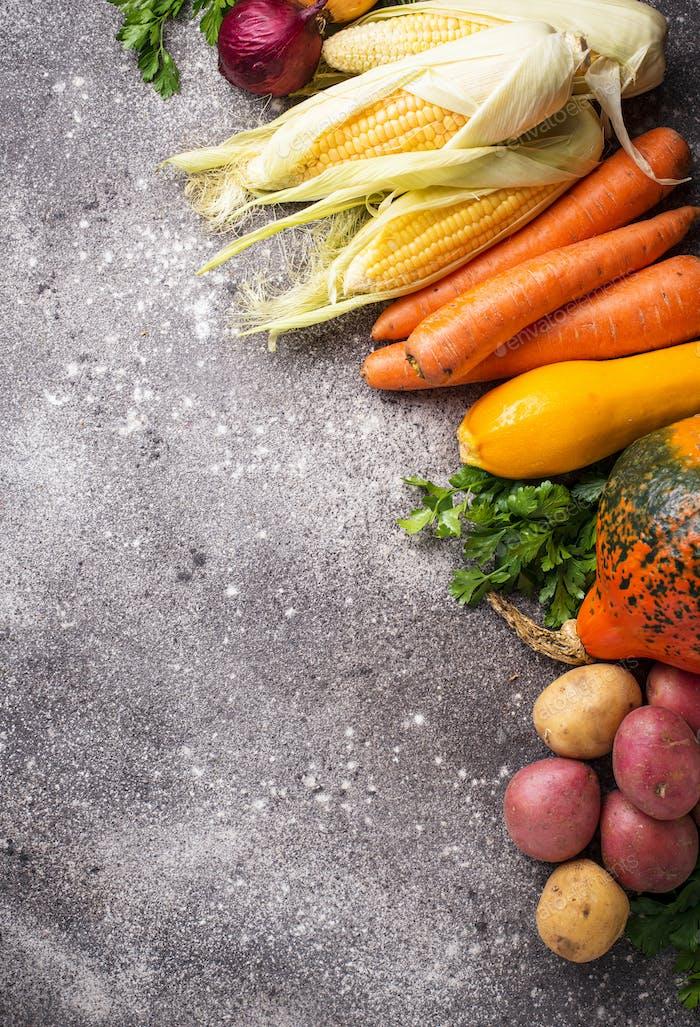 Various autumn vegetables. Harvest concept