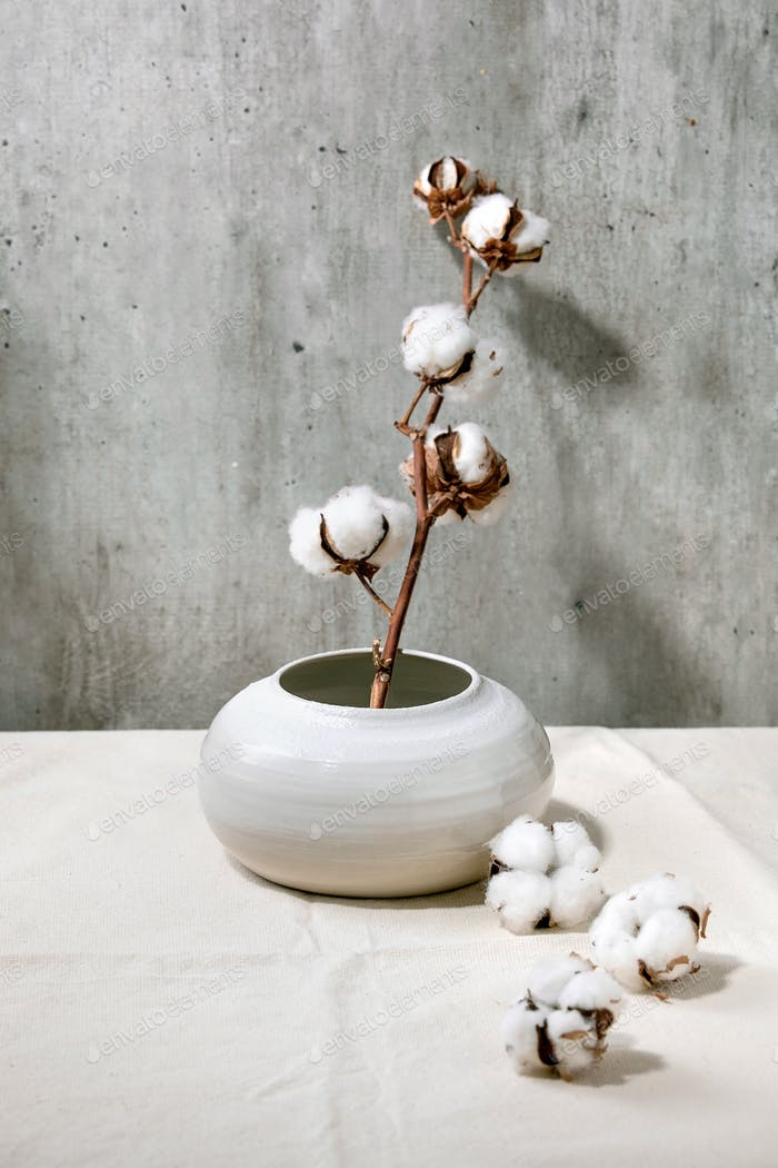 Vase with cotton flowers