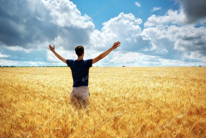 Mann auf Weizenwiese