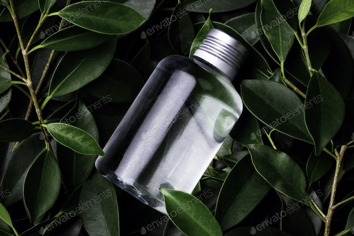 Clear small bottle placed on top of bush (with Clipping Path)