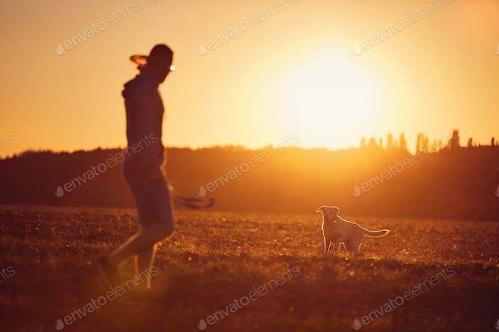 Mann werfen fliegende Scheibe für seinen Hund