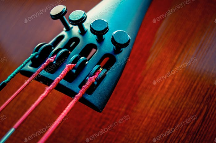 Close Up Of Cello Strings