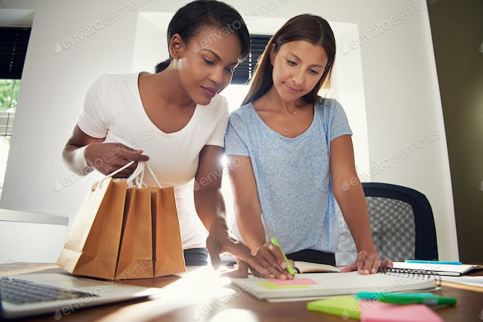 Two business entrepreneurs designing packaging