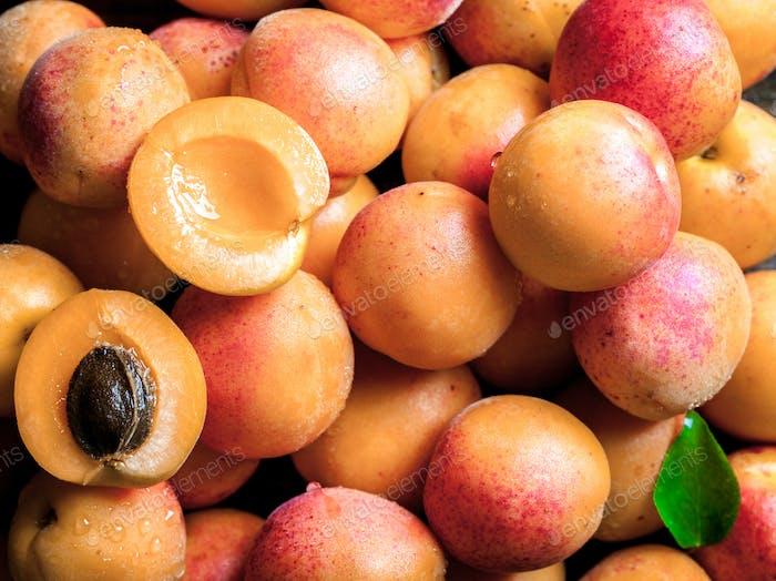 Aprikosen. Obst