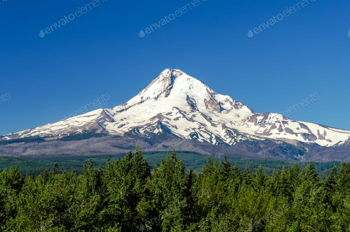 Majestic Mt. Hood