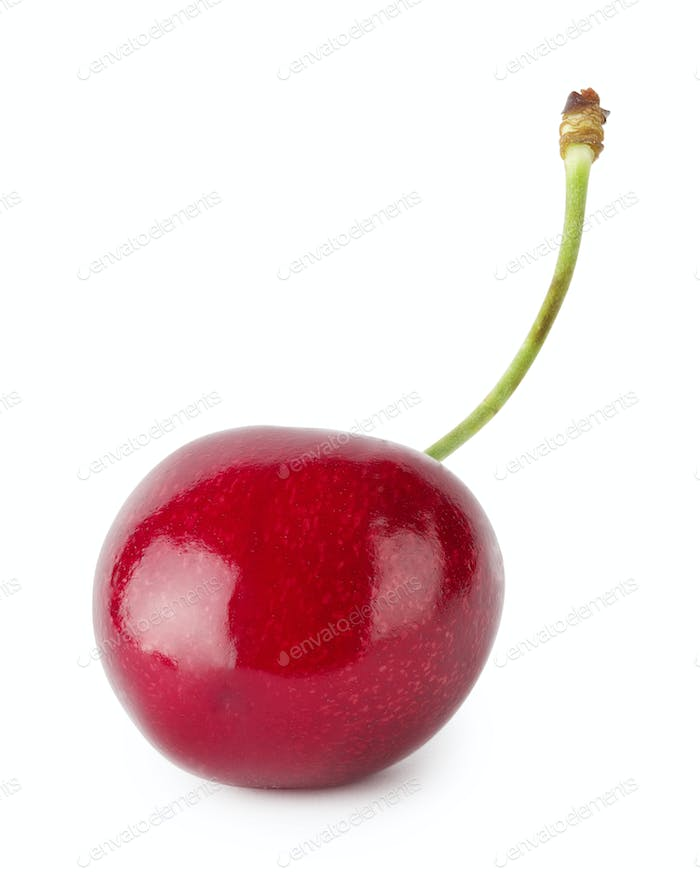 Bright ripe cherry with handle