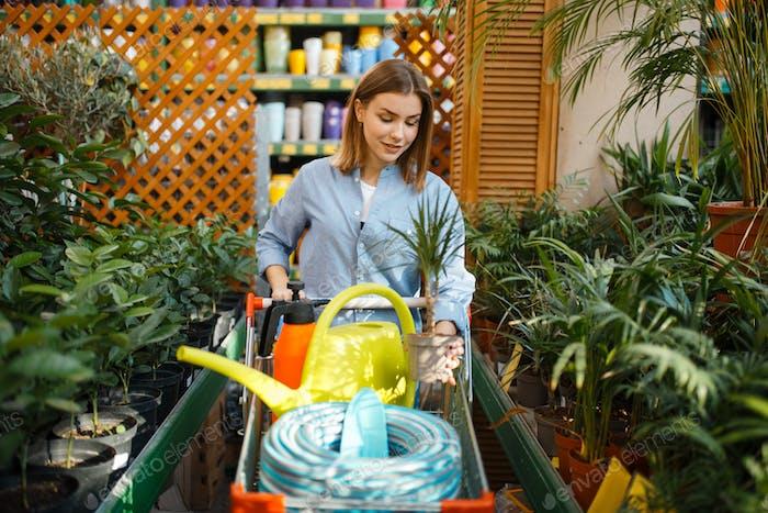 Женский клиент покупает инструменты для флористики