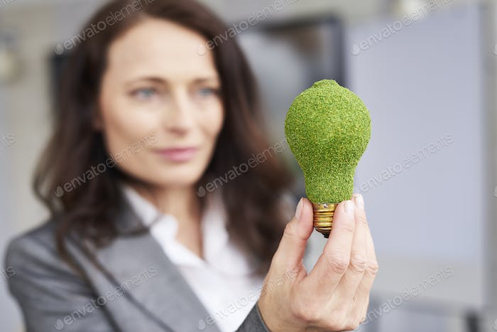 Concept of renewable energy with light bulb