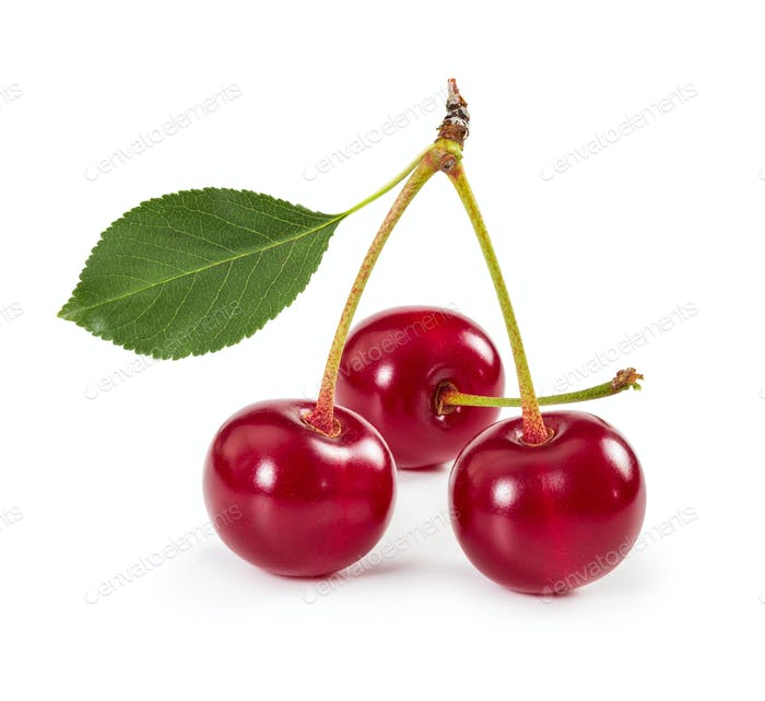 Three ripe cherries on stem with leaf isolated on white backgrou