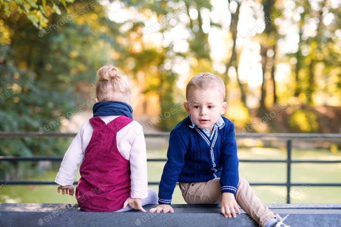 Twin toddler sibling boy and girl sitting in autumn forest