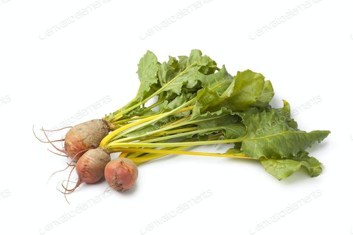 Fresh raw yellow beets