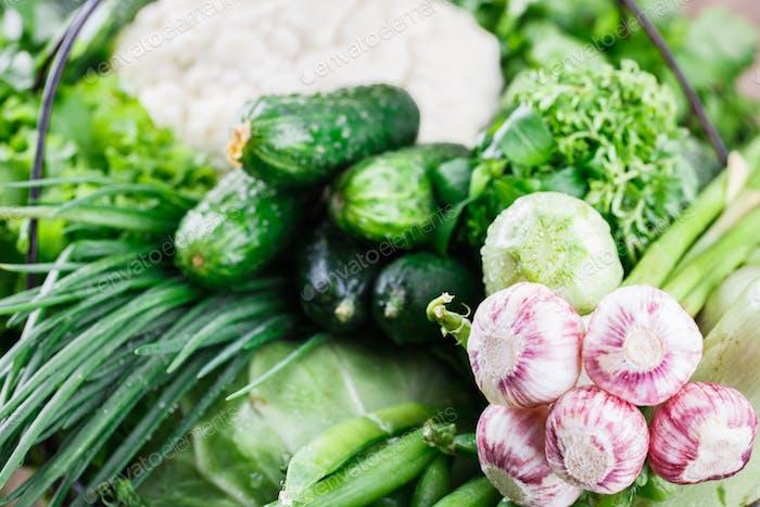 Gemüsesorte