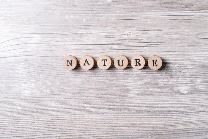 Palabra naturaleza hecha de letras de madera