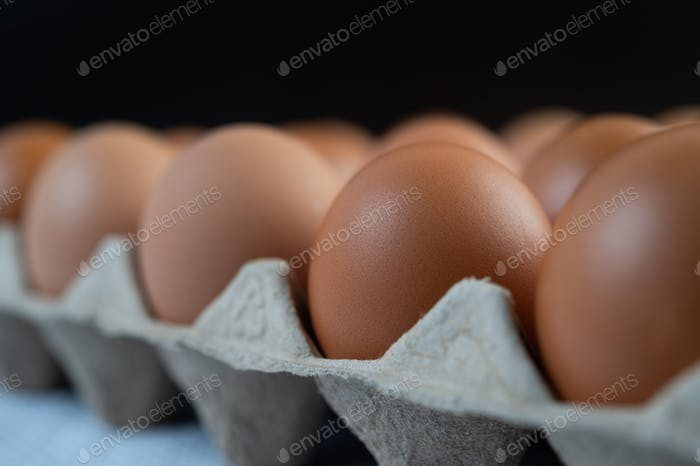Chicken eggs placed on an egg tray. Close-up.