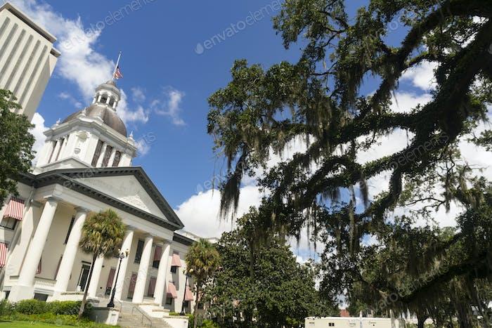 Флорида Стейтхаус с голубым небом