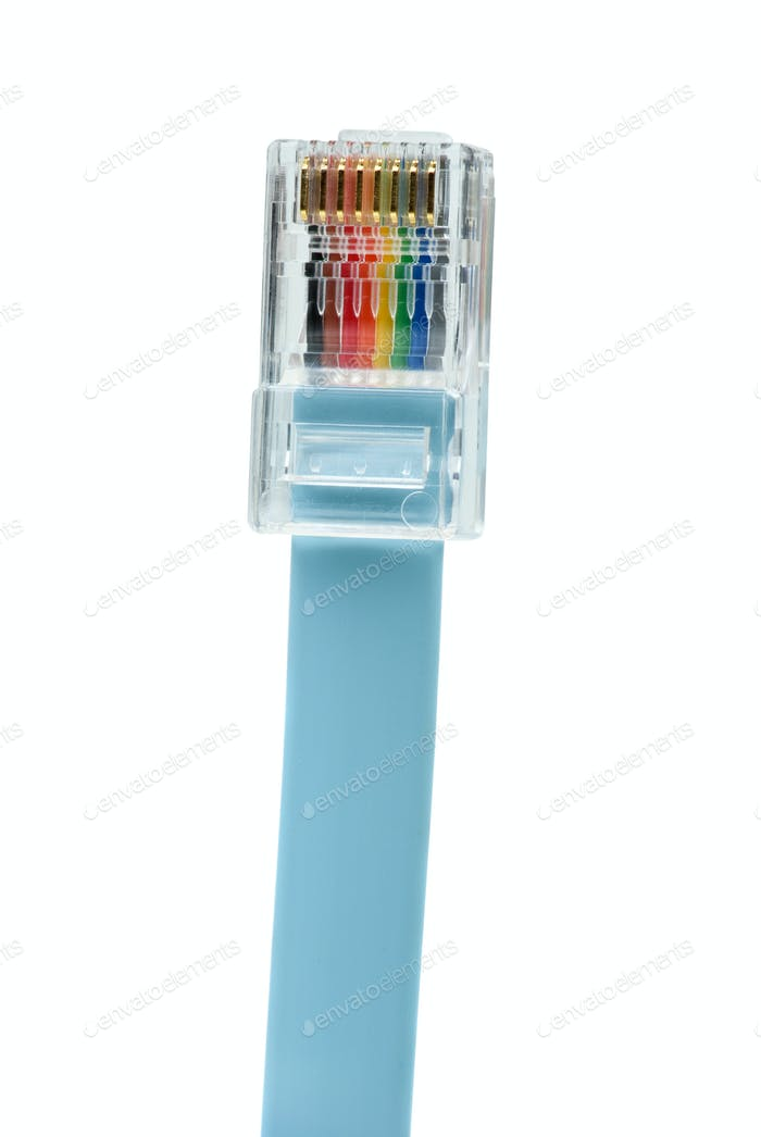 Blue patchkord networking cable with RJ45 connector