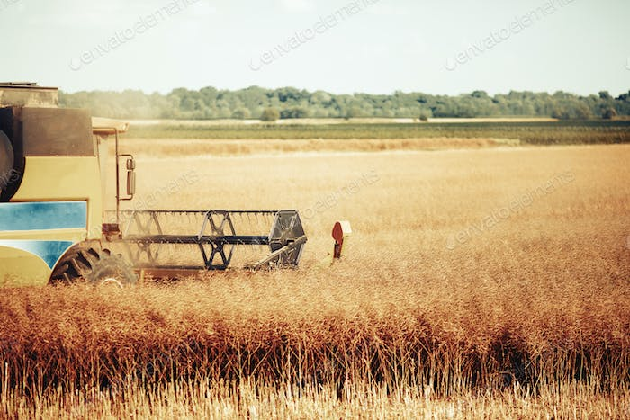 Agricultura machine working in fields