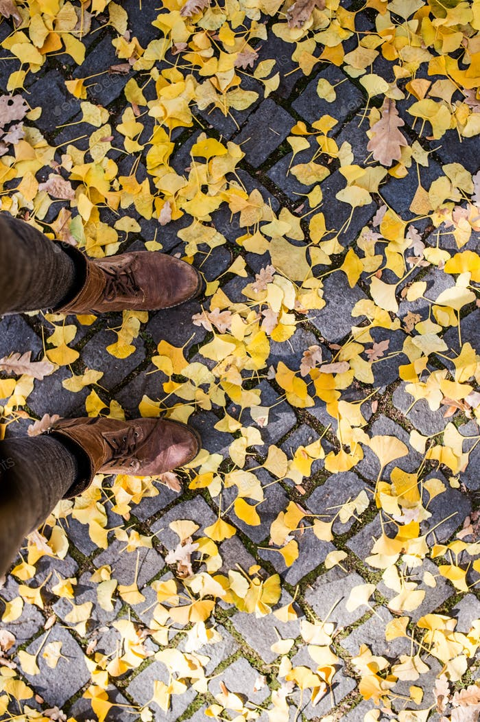 Legs of unrecognizable person in winter boots. Colorful autumn leaves.