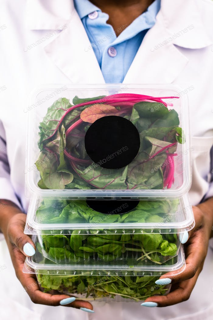 Three plastic containers with organic food held by African greenhouse worker