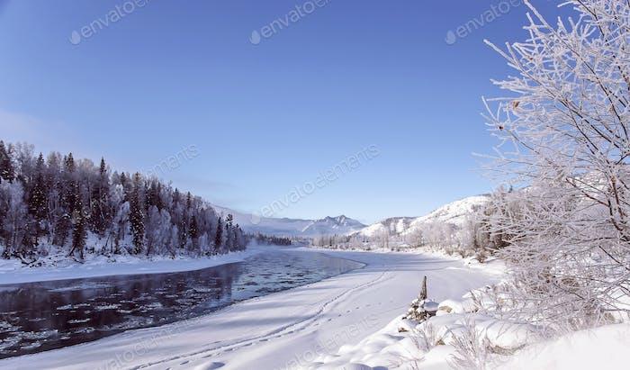 Winter snowy landscape by a river , Russia, Siberia Altai