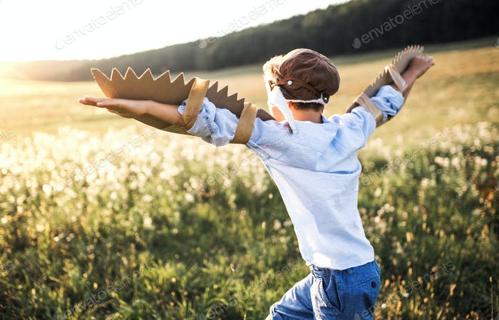 A small boy playing on a meadow in nature, with goggles and wings as if flying.