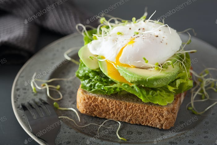 breakfast toast with avocado, poached egg and alfalfa sprouts