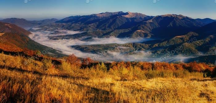 View of misty fog mountains in autumn, Carpathians, Ukraine.