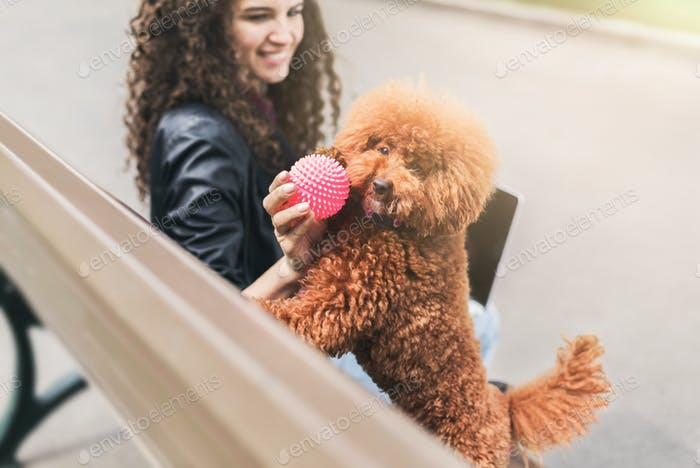 Happy young woman and little dog playing outdoors