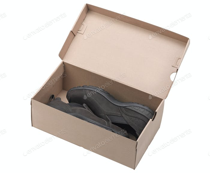 Pair of brown leather shoes in a box.