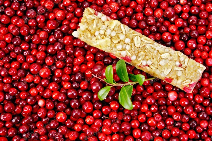 Granola bar in the cranberries with a sprig