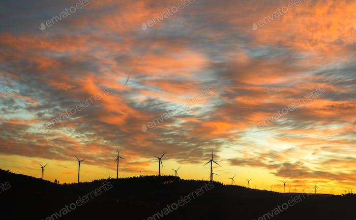 Windpark vor einer orangefarbenen Wolkenlandschaft abgeschnitten