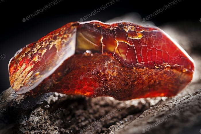 Natural amber. A piece of dark red semi transparent natural amber on piece of stoned wood