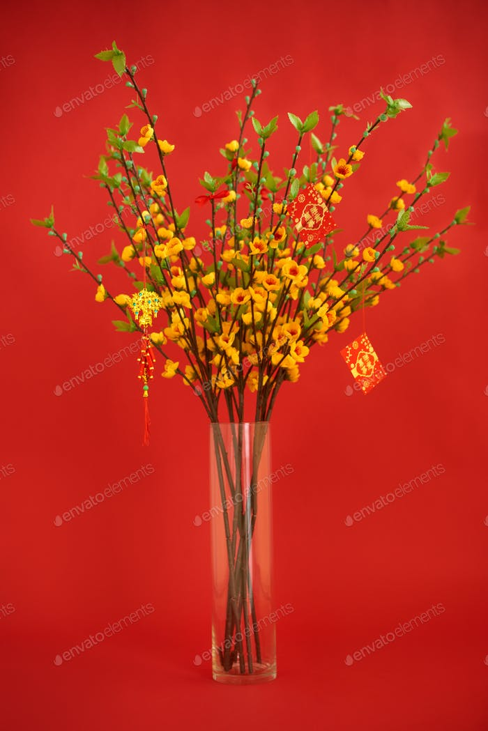 Apricot branches for Chinese New Year
