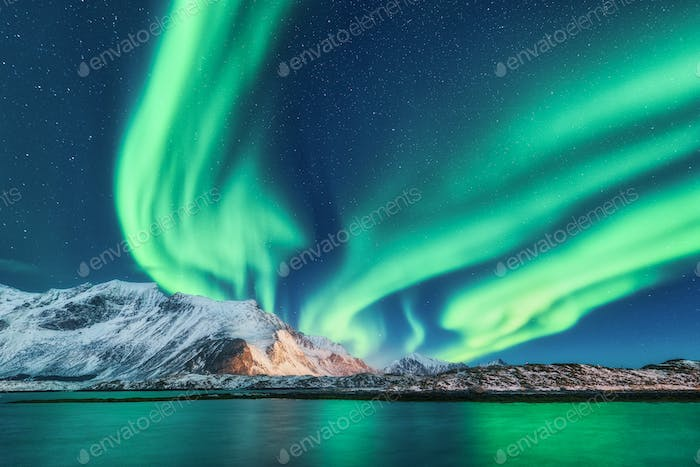 Green northern lights in Lofoten islands, Norway. Aurora borealis