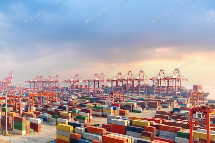 Thumbnail for shanghai container terminal at dusk