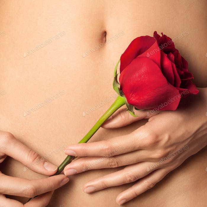 Frau Bauch und Hände halten rote Rose. Platz für Text.
