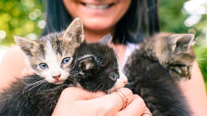 Drei Kätzchen auf den Händen der Frau kuscheln glückliches Lächeln