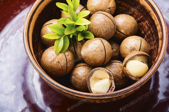 Shelled macadamia nuts