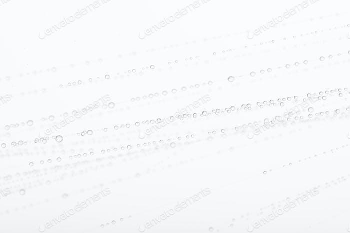 Water on spider web against white background, studio shot